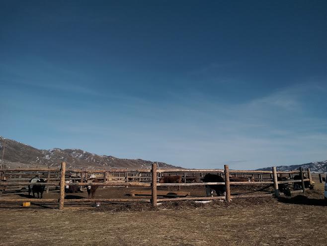 柵で仕切られたスペース
