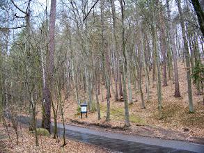 """Photo: Ul. 23 - Marca - Dolina Gołębiewska - szlak """"zielony - Skarszewski""""- kierunek na Sopot Kamienny Potok"""