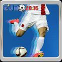 Euro 2016 Soccer icon