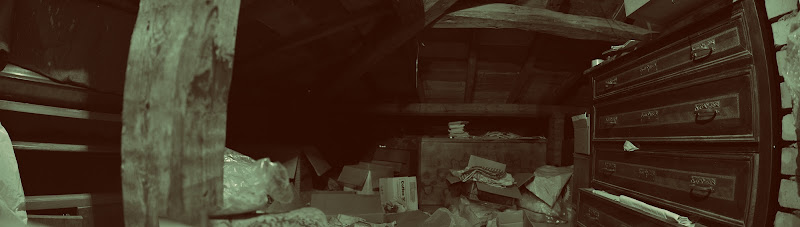 Svuotando la soffitta di Pieraz86