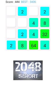 2048 SENORT - náhled