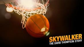 Skywalker: The David Thompson Story thumbnail