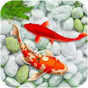 KOI Fish Live Wallpaper : New fish Wallpaper 2020