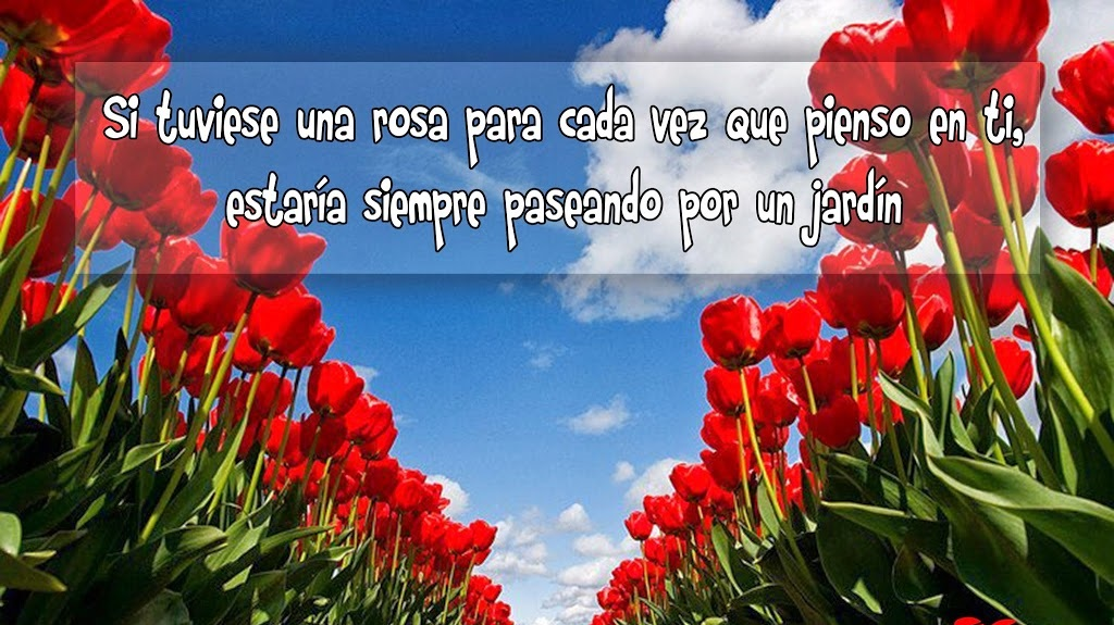 Frases Celebres Con Paisajes Android Apps On Google Play