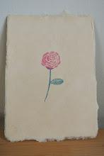 Photo: 28 (rose)