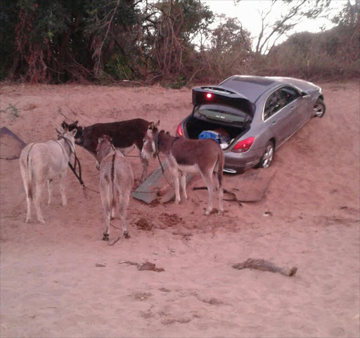 Donkeys cart stolen cars off to Zimbabwe. Picture Credit: SAPS Facebook