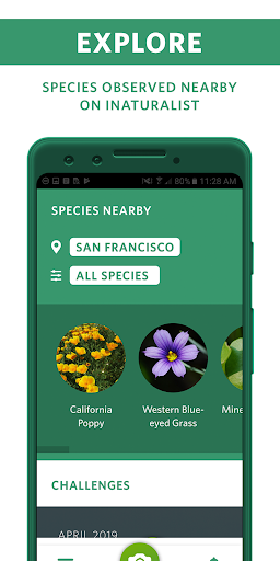 Seek by iNaturalist screenshot 5