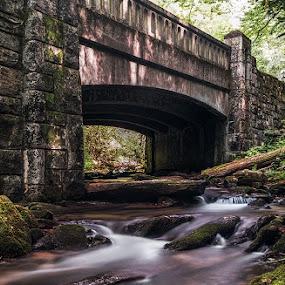 The bridge by Jeremy Yoho - Buildings & Architecture Bridges & Suspended Structures ( water, cascade, moss, bridge, river )