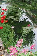 Photo: Stream & Flowers, Creysse