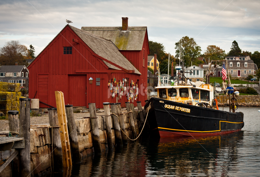 by Daniel Olsen - Landscapes Travel ( vacation, new england, boston, autumn, composition, 2010, example )