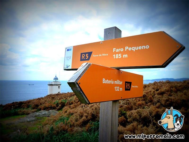 Senderismo con Perro Faros de Mera Ruta 5, A Coruña con un Can de Palleiro y un Border Collie