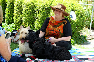 Photo: Desley with two of the rescue dogs from QLD and Henry the wheaten. The rescue dogs have blossomed since rescue.