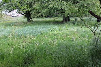 terrain à Roche-lez-Beaupré (25)