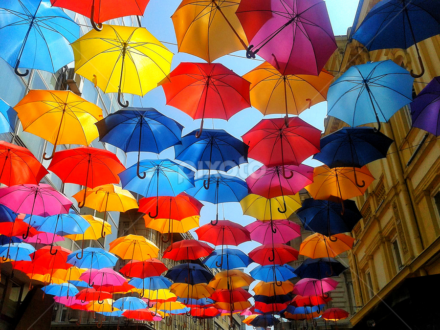Multicolour by Sinisa Petkovic - City,  Street & Park  Street Scenes ( staff favorites )