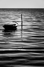 Photo: too far away from the shore  this one escaped from deleting... lucky duck!! I've also processed it in color, but I'm in no mood for color today.   for #ThirstyThursday with +Giuseppe Basile