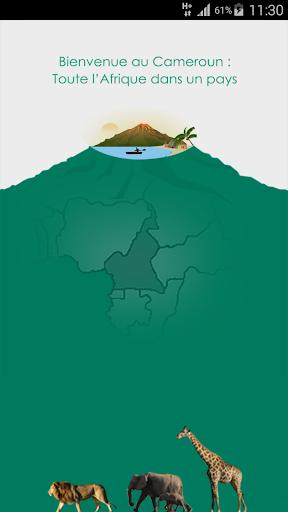 Cybertourisme cameroun