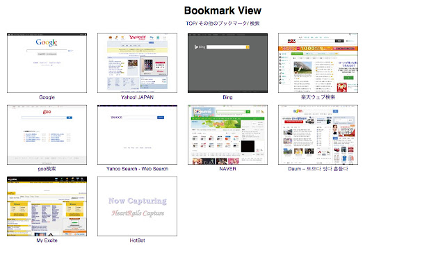 Bookmark View