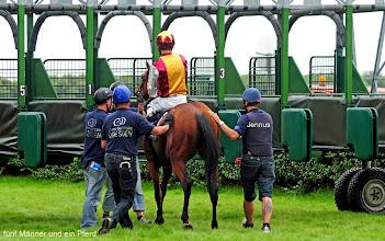 Photo: fünf Männer und ein Pferd