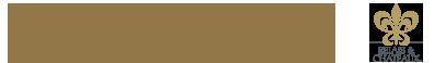 Logo Torre del Visco