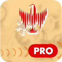 Snowsport Video App PRO icon