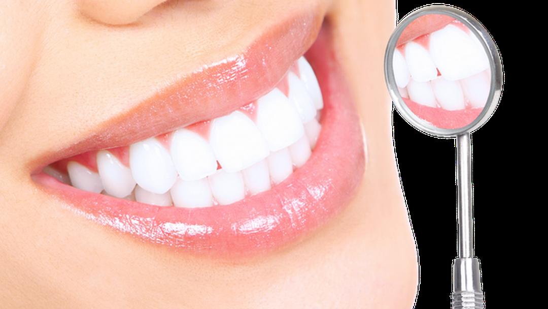 Jacobson and Chubak Endodontics - Endodontist in New York