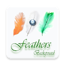 Feather wallpaper hd v 1.0 app icon
