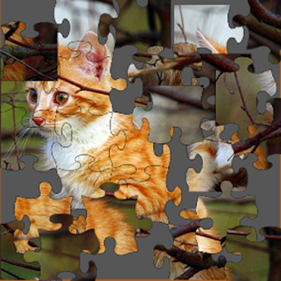 The Sweetest Cats Puzzle- screenshot thumbnail