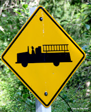 Photo: (Year 2) Day 334 - Love This Road Sign