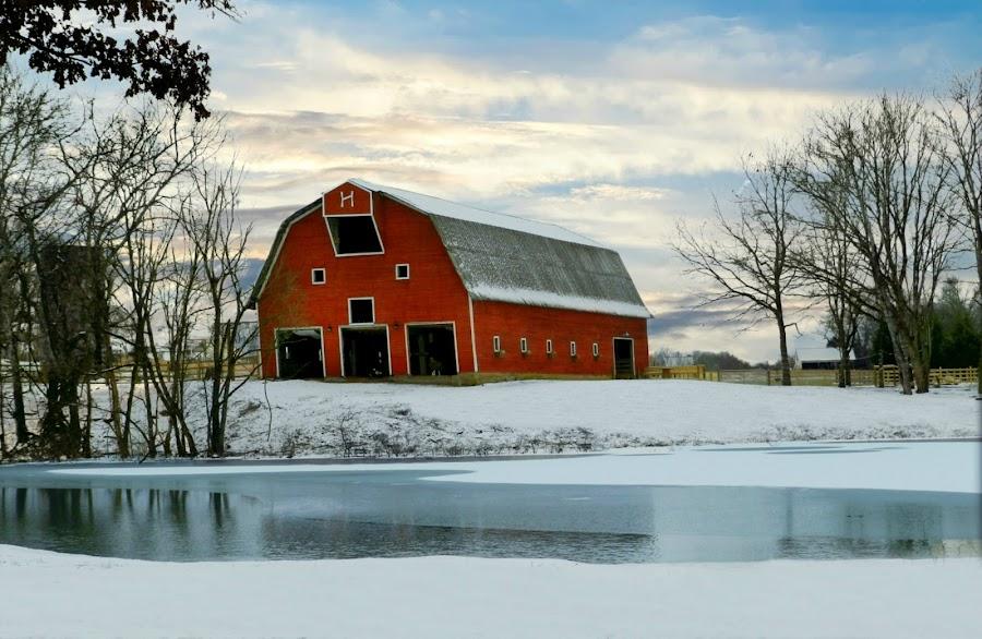 Red Barn by Karen Carter Goforth - Uncategorized All Uncategorized ( red, barn, snow, farm, landscape, building, architecture,  )