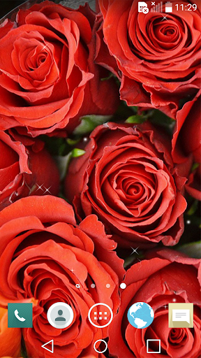Enchanted Rose Live Wallpaper