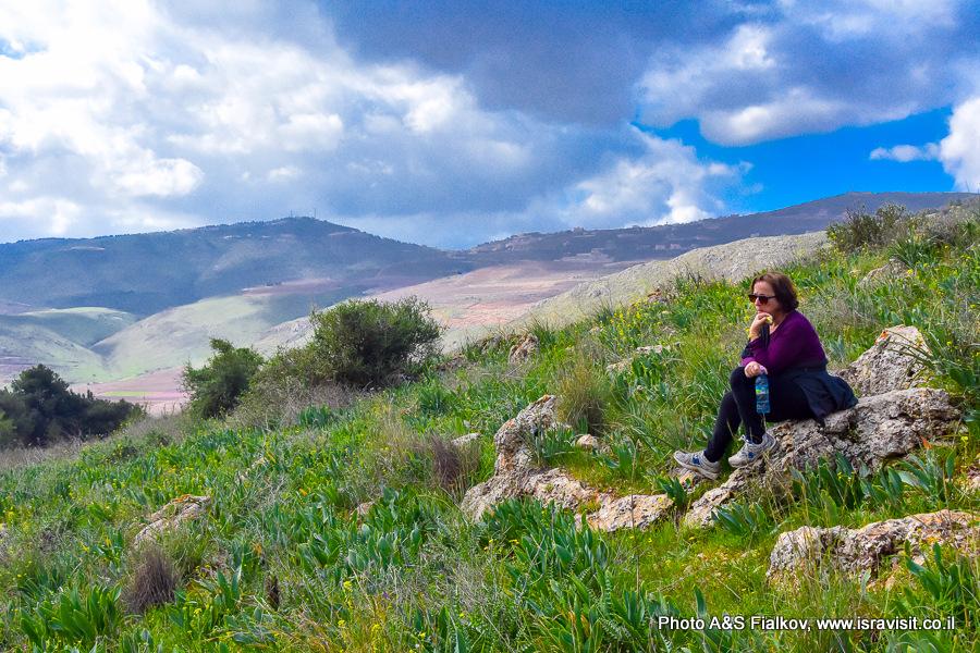 Верхняя Галилея. Израиль.
