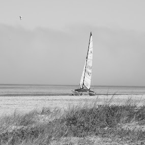 Waiting by Jennifer van Niekerk - Black & White Landscapes ( water, sand, lagoon, grass, black and white, waves, sea, ocean, seascape, beach, boat, morning, sailboat, seagull, autumn, fog, ripples, sail, mist )