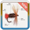 Fishing Technique Idea icon