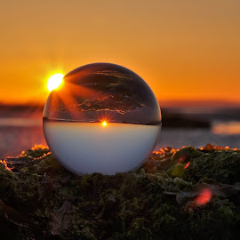Catching the Sun by Tim Clifton - Artistic Objects Glass ( ball, glass, sunrise, crystal, sun )