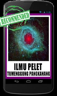 Pelet Tumenggung PANGKANANG - náhled