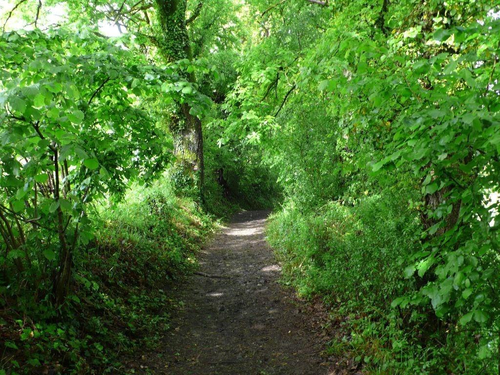 Chemin de compostelle d rouler le chemin et tisser la toile paroisse de c - Chemin de la chasse colomiers ...