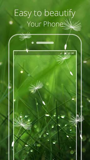 Green Grass Live wallpaper