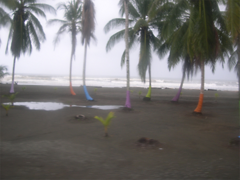 Photo: impressions from the bus, puerto viejo to limon