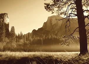 Photo: Sunrise - meadow #2769-600-sepia