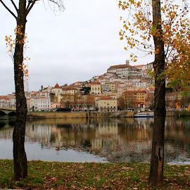 Coimbra by Gil Reis - City,  Street & Park  City Parks ( parks, places, nature, city, portugal, river, coimbra )