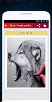 Wolf Drawing - screenshot thumbnail 06