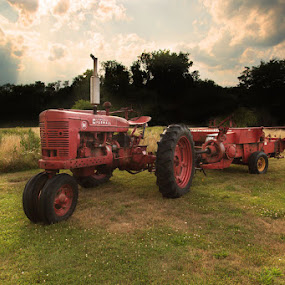 Farmall M by April Brown - Transportation Other ( farm, field, sunset, farmall, hay, m, tractor, country )