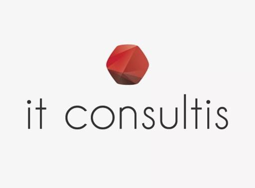 it-consultis-logo