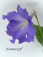 Photo: Smerf