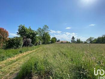 terrain à Peyrehorade (40)
