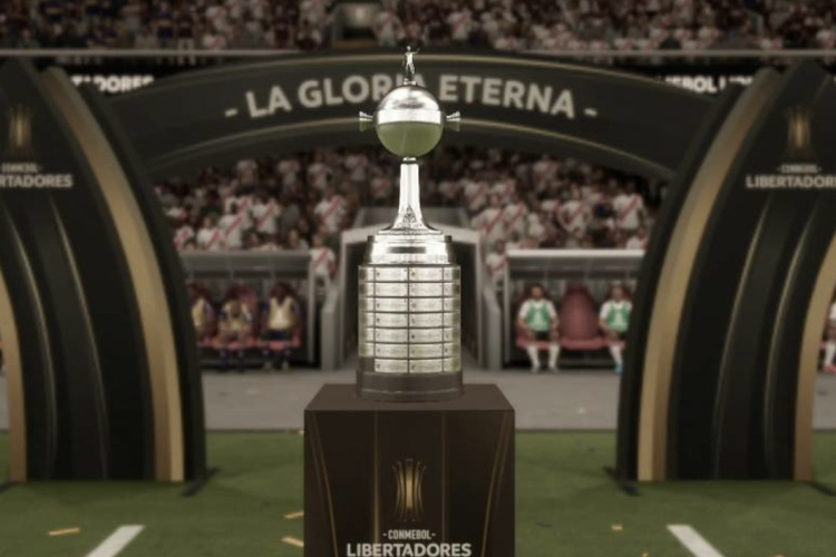 Finale Copa Libertadores wordt Braziliaans onderonsje tussen Santos en Palmeiras