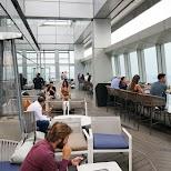 observation deck at Ozone rooftop bar in Hong Kong in Hong Kong, , Hong Kong SAR