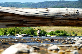 Photo: On the Madison- Mad River Outfitters Montana Trip