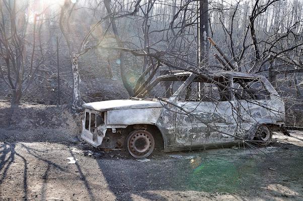 Dopo l'incendio di ottantuno