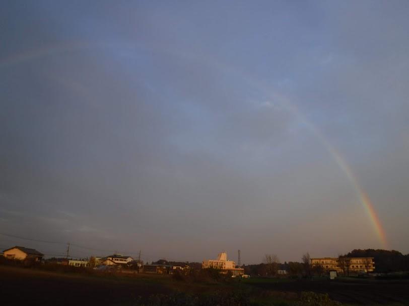 12月なのに暖かい雨が降って虹が出ました。
